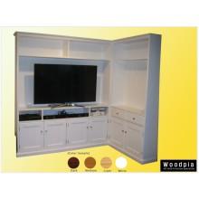 Custom TV Unit(W14)
